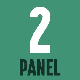 panel-2